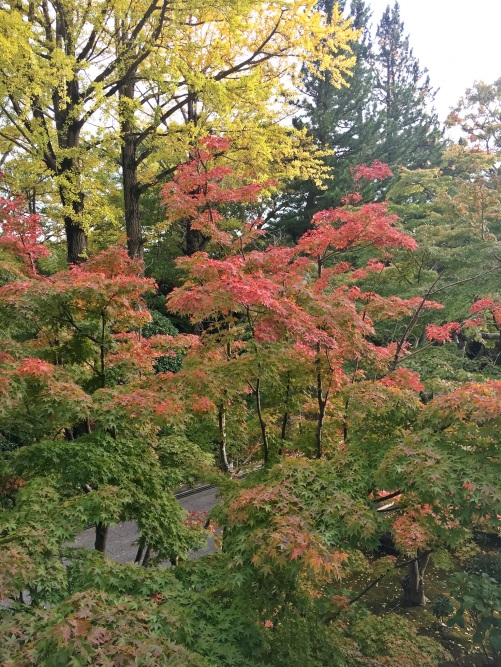 成田山の紅葉